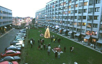 Juletræsfest Hyrdevangen